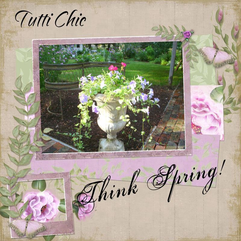 Tuttichic_thinkspring