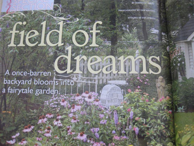 Field of dreams use