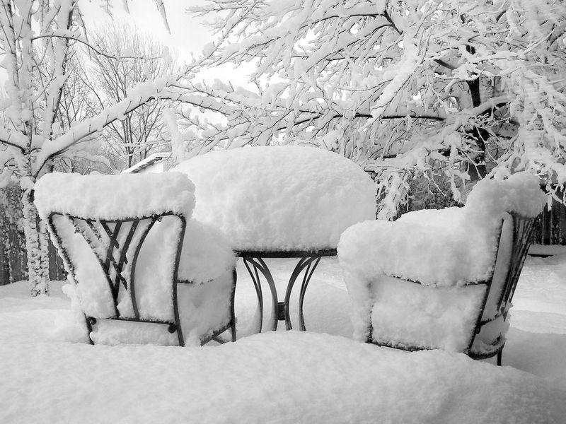 Download-free-desktop-wallpaper-winter-coldreception-jaxxon