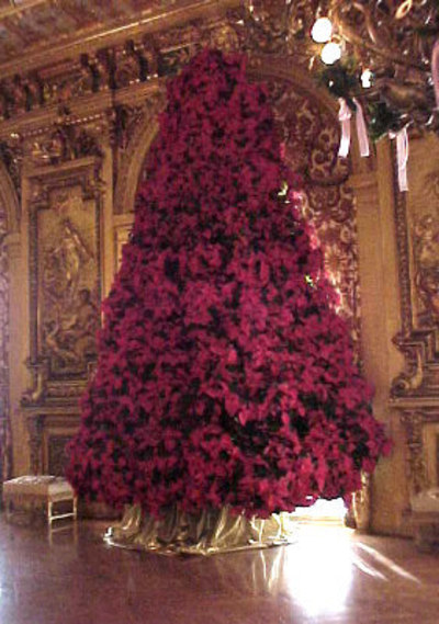 Marblehousepoinsettias